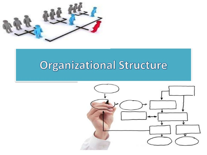 COURAGEOUS Organizational STRUCTURE: How To Lead Your TEAM Through Challenging Times