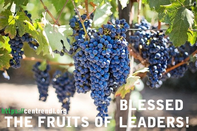 The Indispensable Qualities of Blessed Leaders: Discover The Fruit That Exposes Your Leadership Blessing