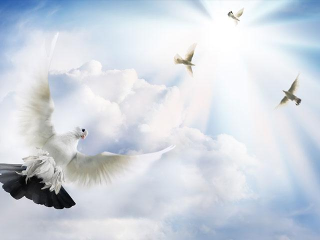 Understanding the Leading and The Speaking of The Holy Spirit : How Does The Holy Spirit Lead Us?